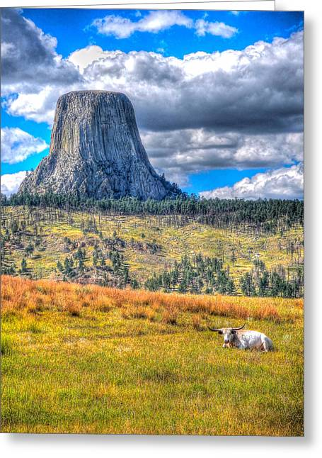 Longhorn At Devils Tower Greeting Card