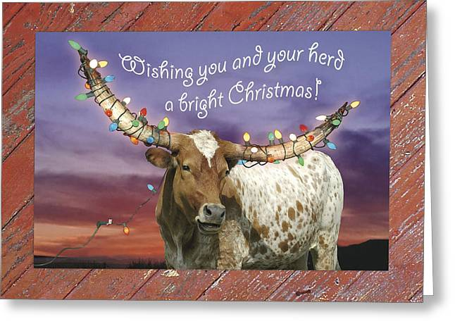 Longhorn bright christmas card photograph by robert anschutz greeting card bookmarktalkfo Gallery
