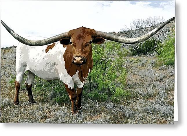 Longhorn Bull Of Texas Greeting Card by Daniel Hagerman
