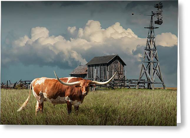 Longhorn Steer In A Prairie Pasture By Windmill And Old Gray Wooden Barn Greeting Card