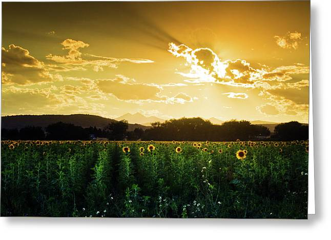 Greeting Card featuring the photograph Longmont Summer Skies 2 by John De Bord
