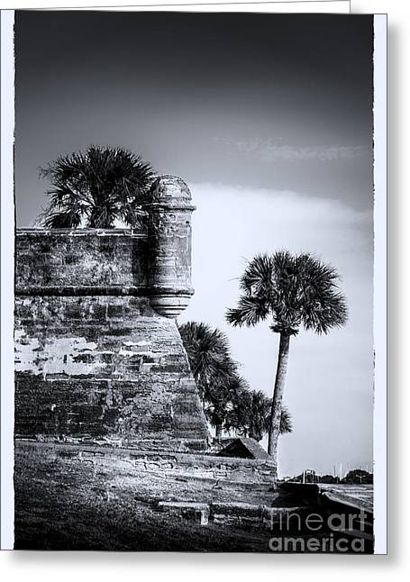Look Out - Bw Greeting Card