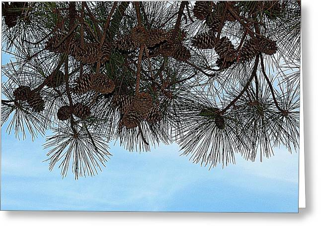 Greeting Card featuring the photograph Look Up- Fine Art by KayeCee Spain