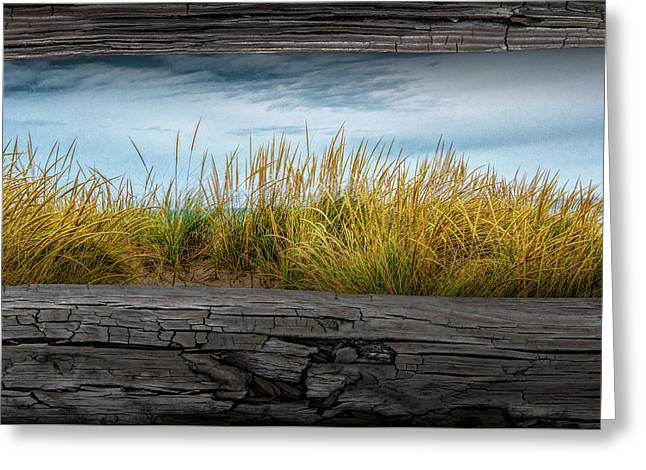Looking At Beach Grass Between The Fence Rails Greeting Card