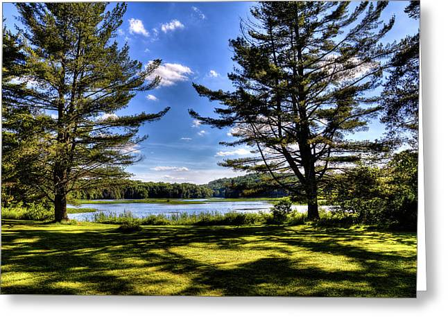 Looking At The Moose River Greeting Card by David Patterson