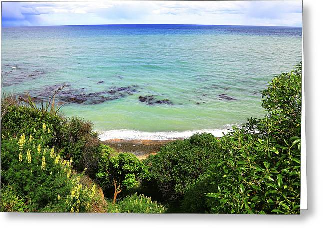 Greeting Card featuring the photograph Looking Down To The Beach by Nareeta Martin