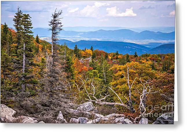 Looking East From Bear Rocks 4290c Greeting Card