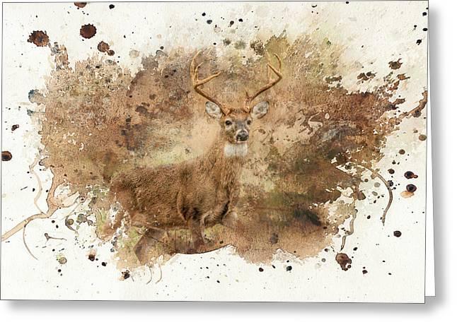Looking For Her Deer Art Greeting Card by Jai Johnson