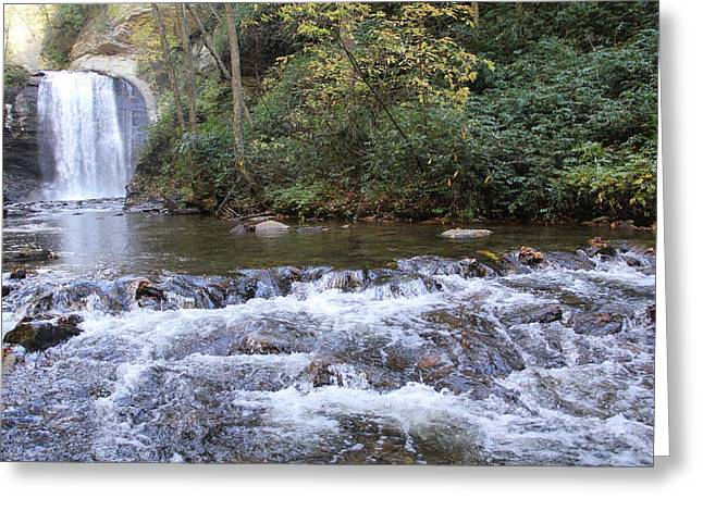 Looking Glass Falls Downstream Greeting Card