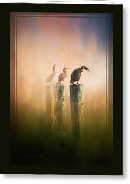 Looking Into The Mist Greeting Card by Marvin Spates