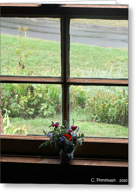 Looking Out Greeting Card by Carolyn Postelwait