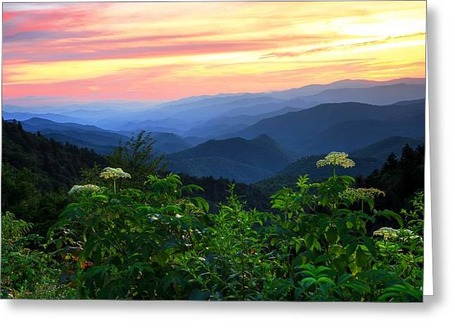 Looking Out Over Woolyback On The Blue Ridge Parkway  Greeting Card