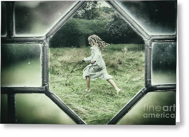 Looking Through Leaded Glass Window Greeting Card by Amanda Elwell
