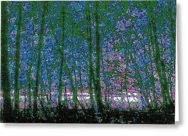 Greeting Card featuring the photograph Looking Through The Trees by Lyle Crump