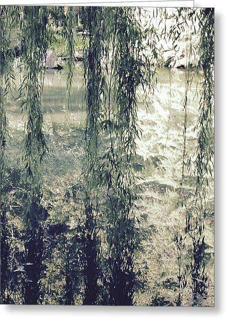 Looking Through The Willow Branches Greeting Card by Linda Geiger