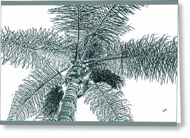 Looking Up At Palm Tree Green Greeting Card by Ben and Raisa Gertsberg