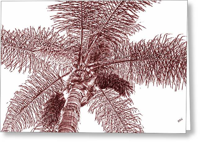 Looking Up At Palm Tree Red Greeting Card by Ben and Raisa Gertsberg
