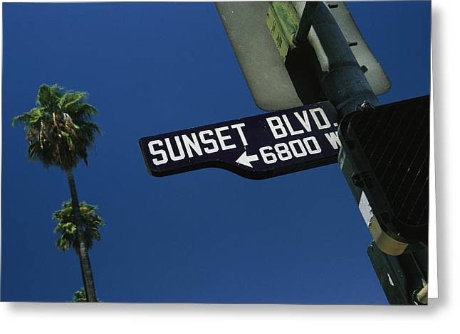 Plant Hollywood Greeting Cards - Looking Up At Sunset Boulevard Sign Greeting Card by Todd Gipstein