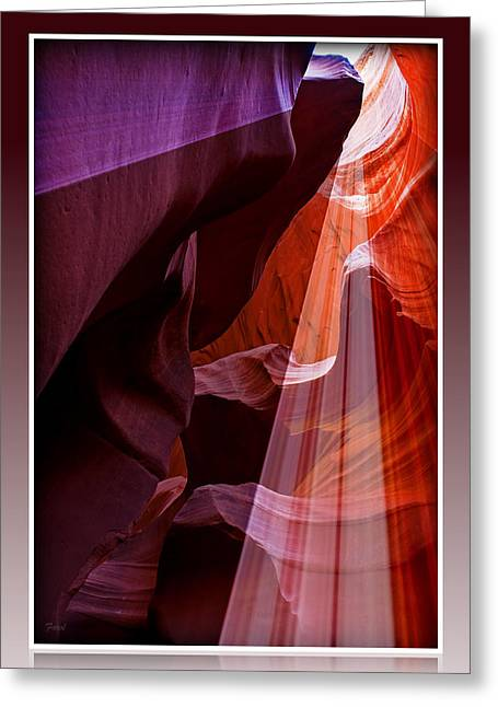 Looking Up Greeting Card by Farol Tomson