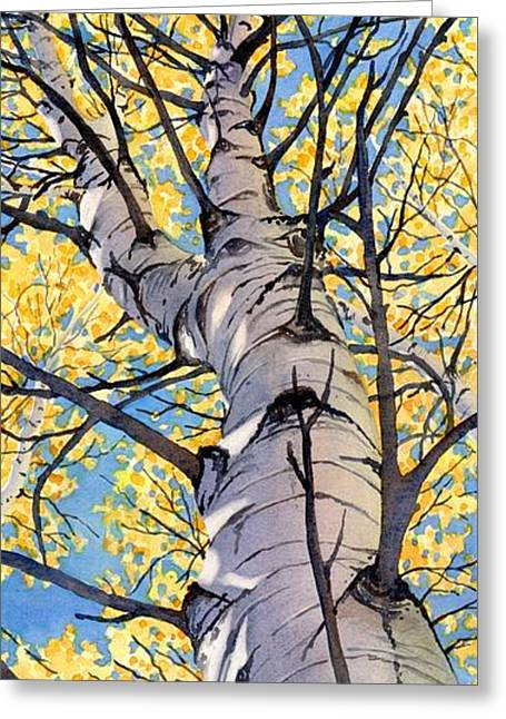 Looking Up Greeting Card by Lorraine Watry