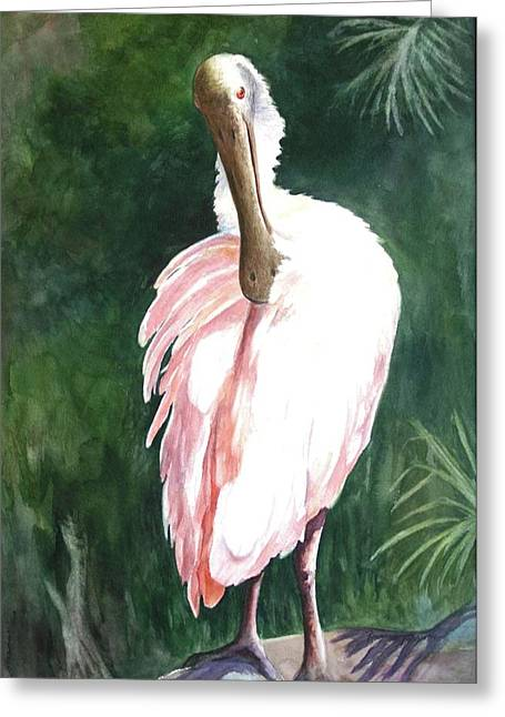 Greeting Card featuring the painting Look'n Back - Spoonbill by Roxanne Tobaison