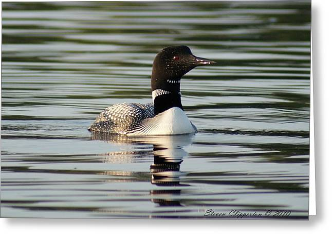 Loon 1 Greeting Card