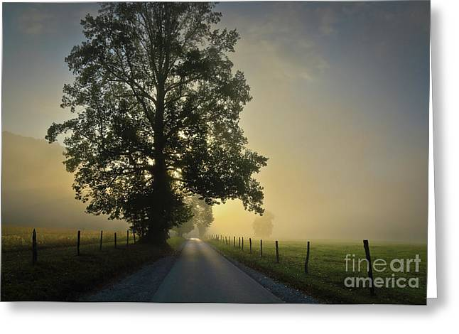 Loop Rd Sunrise Greeting Card