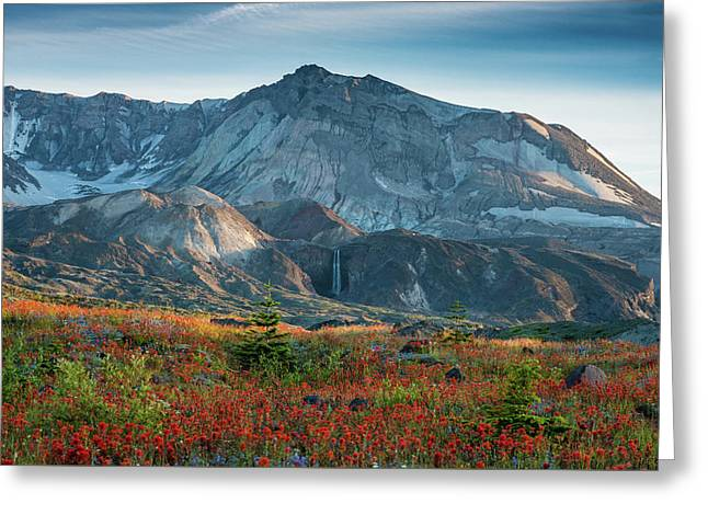 Loowit Falls Mount St Helens Wildflowers Greeting Card