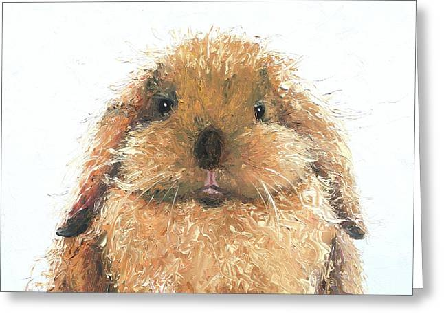 Lop Eared Rabbit - Hamish Greeting Card