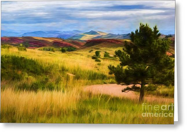 Lory State Park Impression Greeting Card by Jon Burch Photography