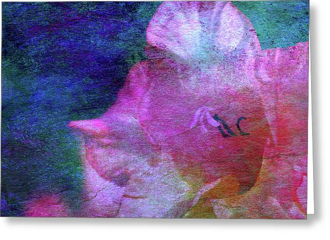Lost Gladiolus Blossom 3018 L_2 Greeting Card