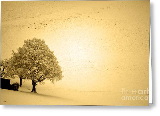 Greeting Card featuring the photograph Lost In Snow - Winter In Switzerland by Susanne Van Hulst