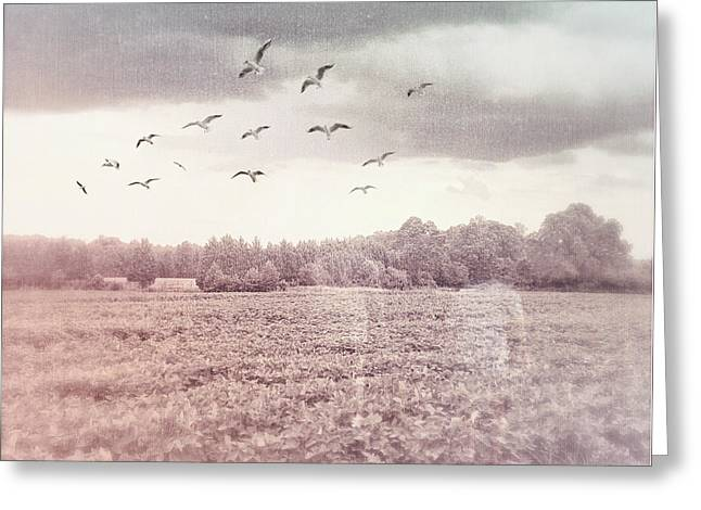 Lost In The Fields Of Time Greeting Card
