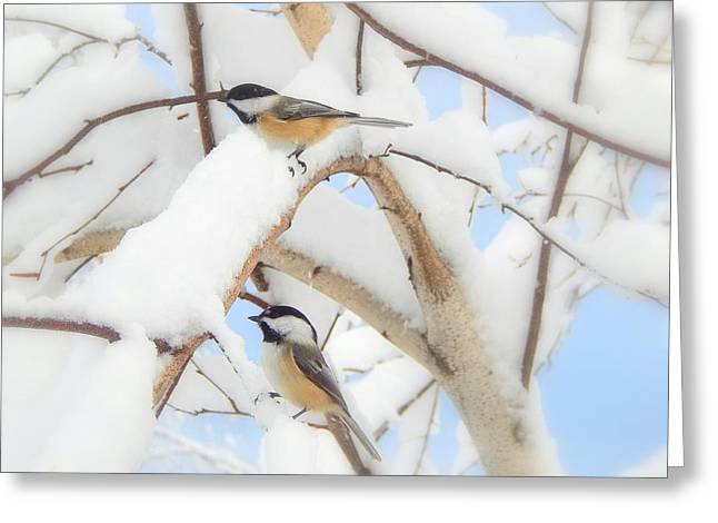 Lost In The Snow Greeting Card by Karen Cook
