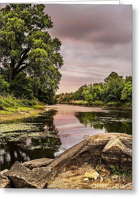 Lost Lake II Greeting Card by Tamyra Ayles