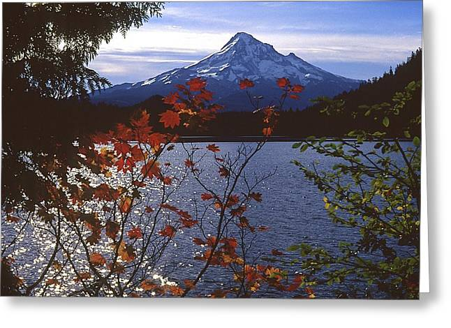 Lost Lake Greeting Card by Todd Kreuter