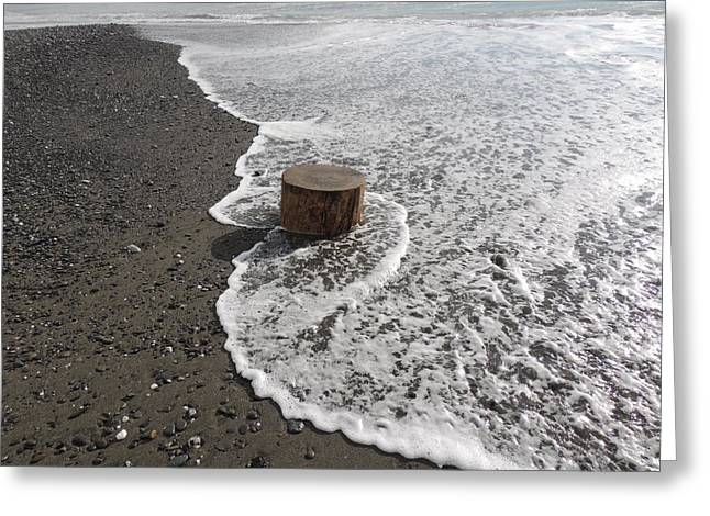 Lost Log On Beach Greeting Card