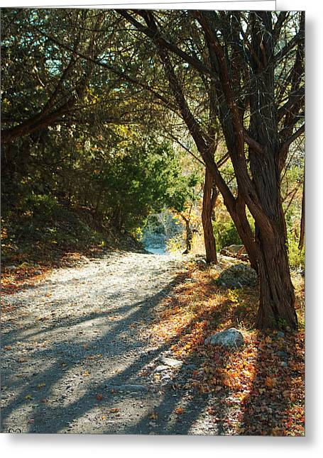 Greeting Card featuring the photograph Lost Maples State Park Path 4 by Karen Musick