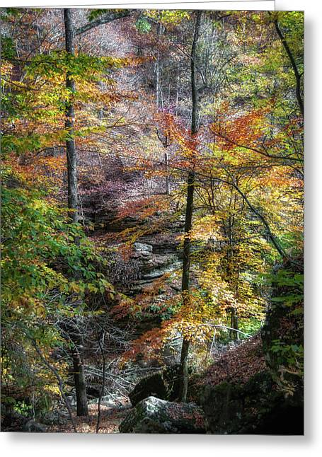 Lost Valley Greeting Card