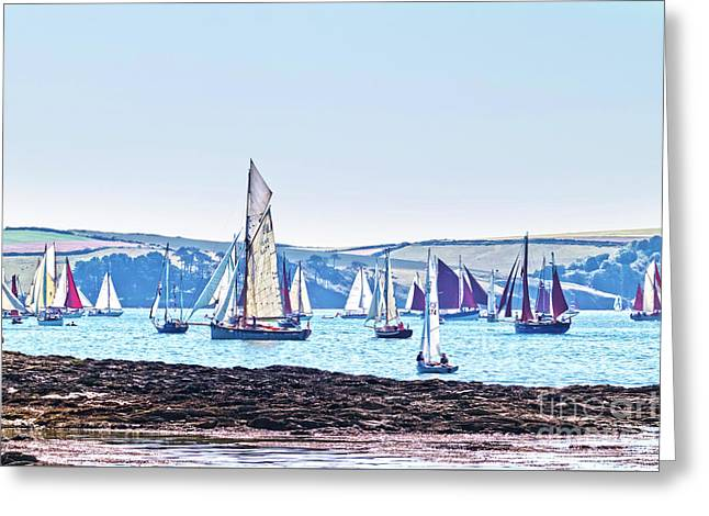 Lots Of Yachts Greeting Card by Terri Waters