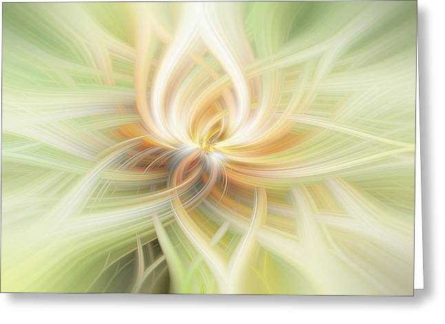 Lotus Abstract Greeting Card by Terry DeLuco