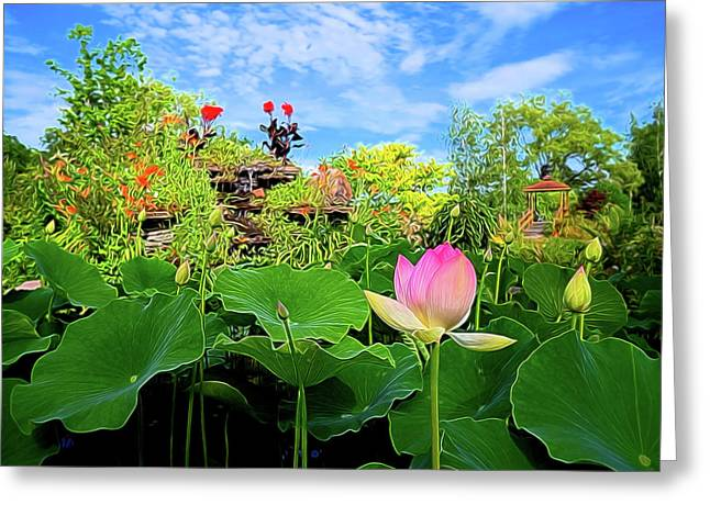 Lotus Alchemy Greeting Card by William Horden