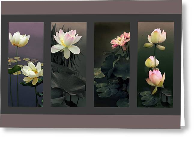 Lotus Collection Greeting Card by Jessica Jenney