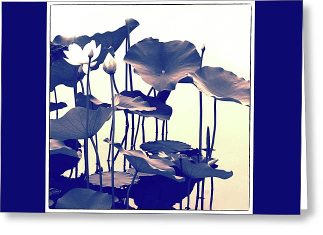 Lotus Entwined Greeting Card by Jessica Jenney