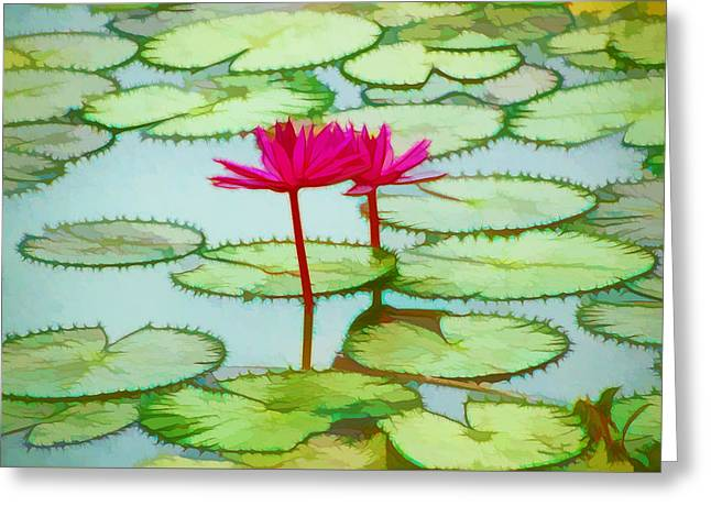 Lotus Flower On The Water 3 Greeting Card by Lanjee Chee