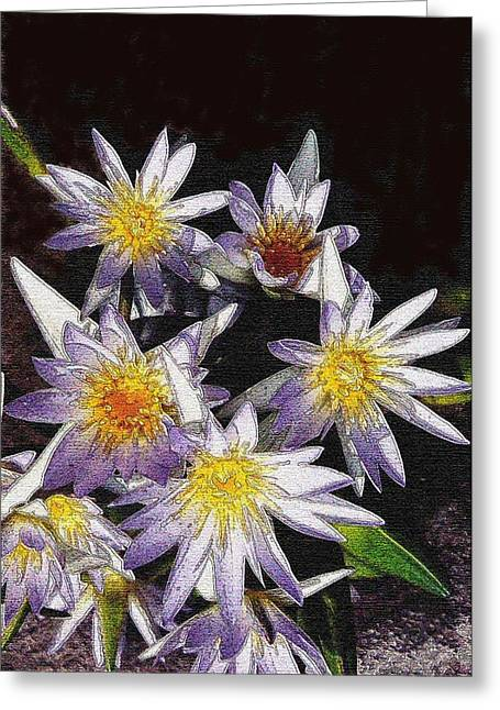 Lotus Flowers Greeting Card by Sherry Oliver