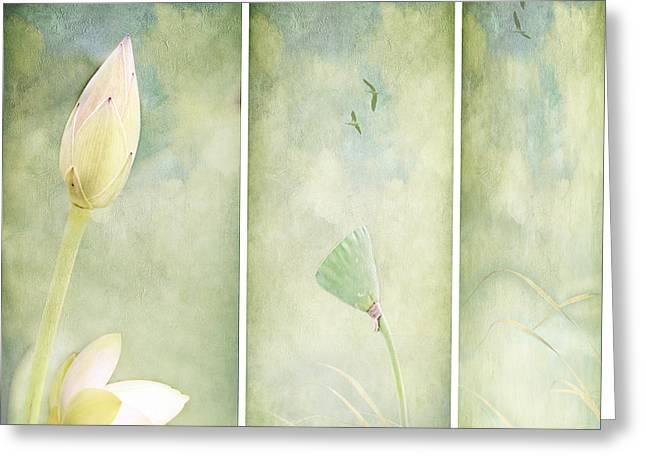 Lotus Garden Greeting Card