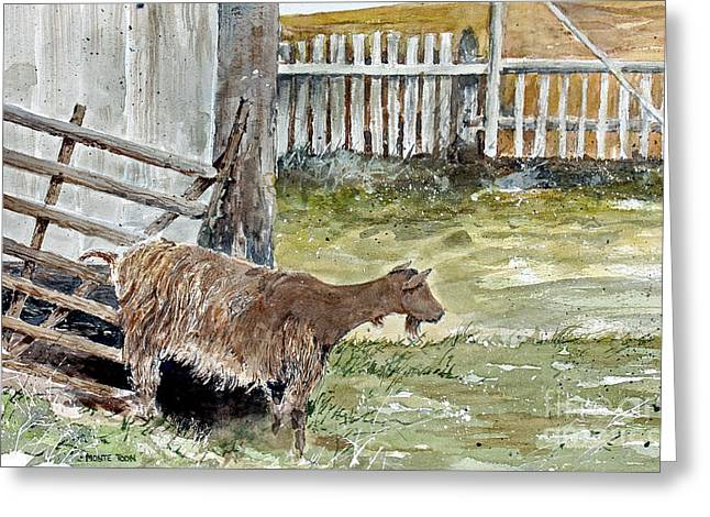 Louisbourg Resident Greeting Card by Monte Toon