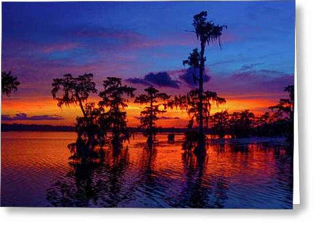 Louisiana Blue Salute Reprise Greeting Card