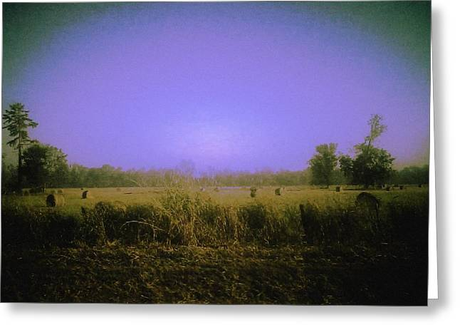 Louisiana Pastoria Greeting Card